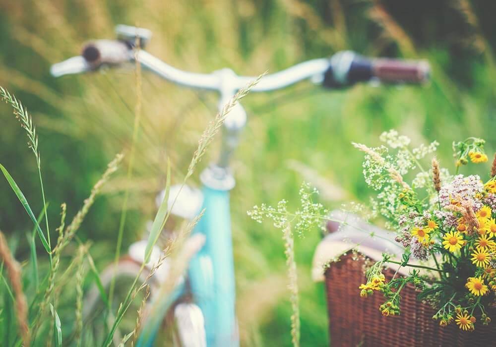 10 motivi per fare foraging