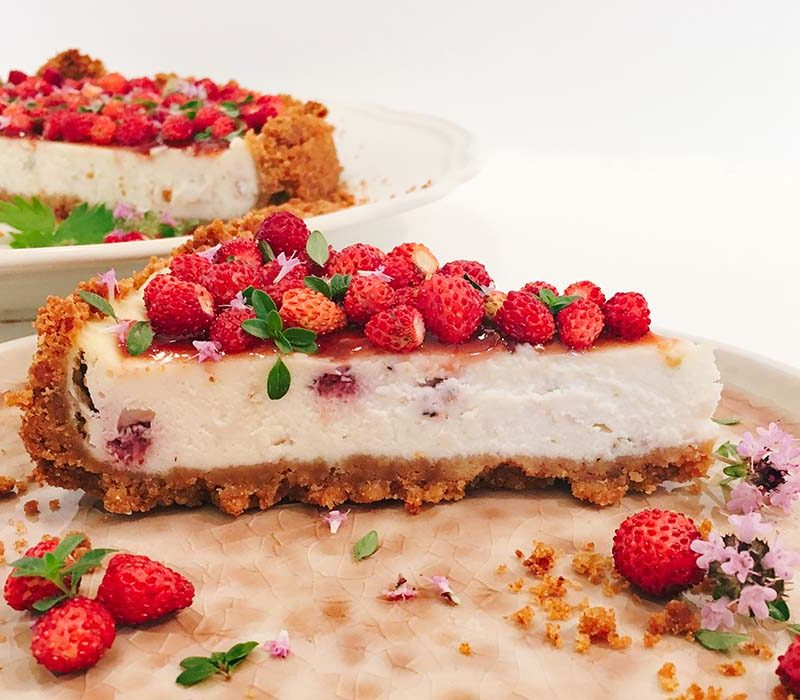Wild cheesecake